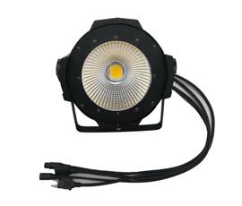 100/200W  COB Light