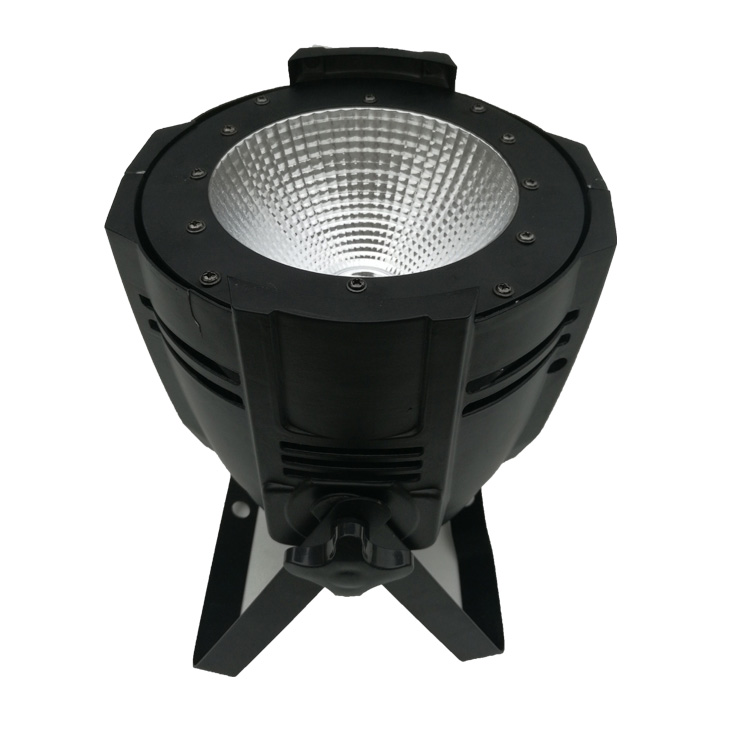 100/200W  COB Light