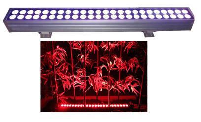 LED双排全彩洗墙灯
